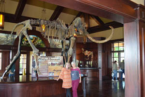 Christy and JoAnn with the skeleton of a 10-ton giant wooly mammoth.