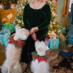 Home for the Holidays with Marilyn Allen